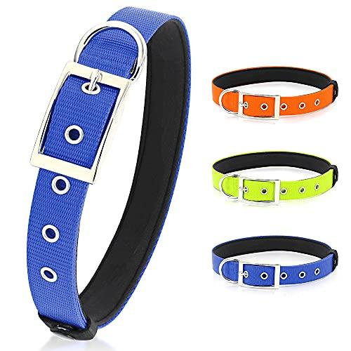 PZRLit Collar Perro Resistente con Suave Acolchado Neopreno, Hebilla de Metal y Anillo en D, Ajustable Transpirable Collares Perros Ancho para la Caminata Diaria Corriendo-Azul,Grande