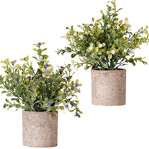 FagusHome Plantas Artificiales en Macetas 2 Piezas Mini Plantas de Eucalipto Rosemary Plants Artificiales en Macetas Plástico para Decoración