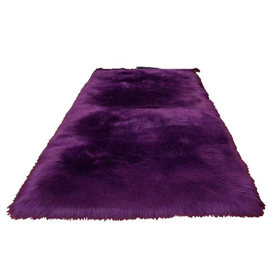 マエストロ宿る教えラグマット 洗える カーペット 120×180cm 滑り止め付 120*180 厚手 抗菌防臭 防ダニ 床暖房対応 長毛 柔らかい マイクロファイバー 北欧 無地 オシャレ 絨毯 柔らかい オールシーズン ホットカーペット対応 パープル