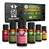 COOLCOW Comfort Essential Oils Set Top 6-10ml - 100% Therapeutic Grade Oils for Aromatherapy Diffusers, Natural Essential Oils Cherry Blossom, Tea Tree, Geranium, Rosemary, Chamomile, Cassia Leaf