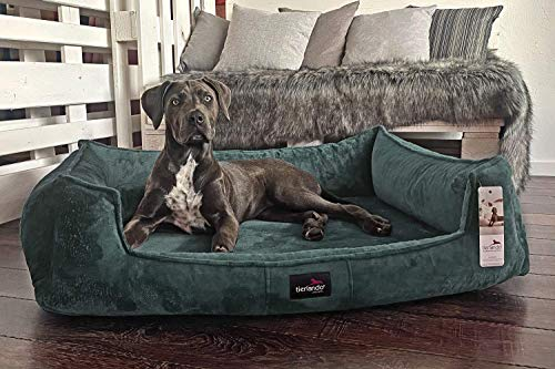 tierlando® Orthopädisches Hundebett Franklin | Hochwertiges Hundesofa | Kuscheliger Teddy-Stoff L+ (110x90 cm) | 38 Petrol