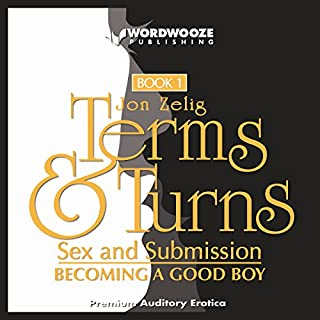 Terms & Turns audiobook cover art