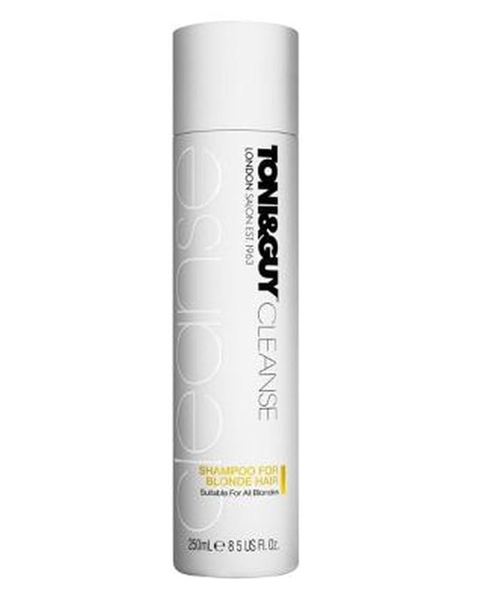 哀投げ捨てる確かなToni&Guy Cleanse Shampoo for Blonde Hair 250ml - トニ&男は金髪の250ミリリットルのためのシャンプーを清めます (Toni & Guy) [並行輸入品]