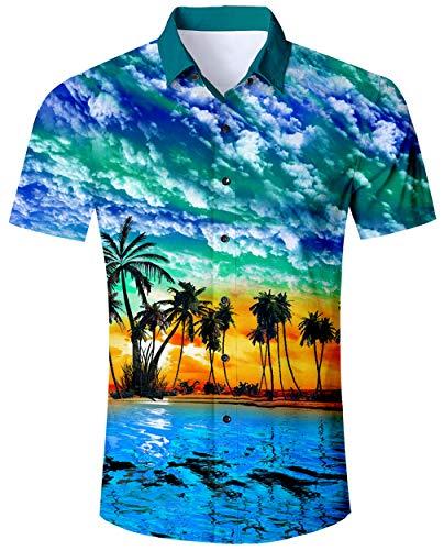 ALISISTER Herren Hawaiihemd Button Down Bluse Hawaii Hemd Kurzarm Erwachsene 3D Palme Lässig Aloha Party Regular Slim Fit Tshirts Himmelblau Strandhemd XL