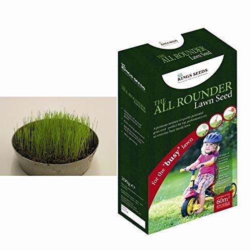 Portal Cool Kings Seeds - Graines de Gazon Le All Rounder - Paquet 200G