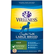 Wellness Natural Pet Food Complete Health Natural Dry Large Breed Dog Food, Chicken & Rice, 30-Pound Bag