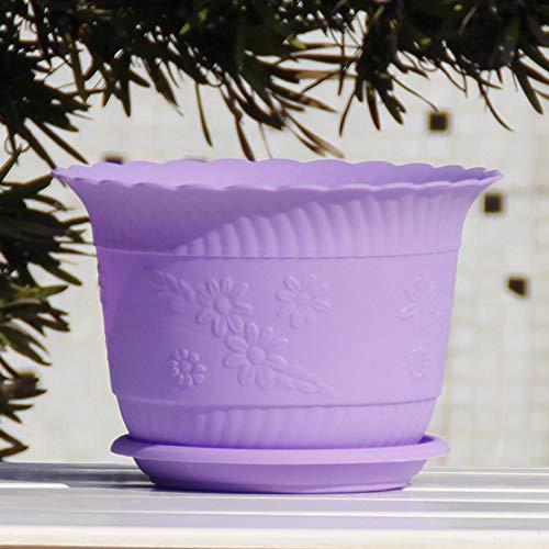 Thwarme kamerplant in kleurrijke pot bloempot 1 pakket bloempot kunststof decoratieve buitenpotten kleine bak met schotel & afvoergaten - robuust en aantrekkelijk voor de, Paars