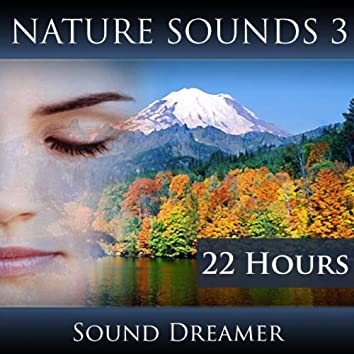 Nature Sounds 3 (22 Hours)