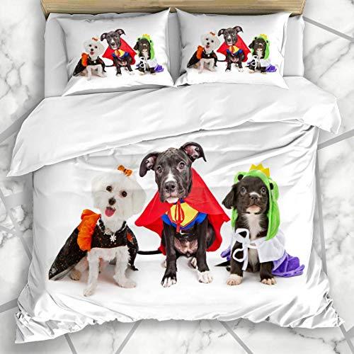 Juegos de fundas nrdicas Happy Orange Three Cute Little Puppy Dogs Domstico Vestido Vacaciones Disfraz de juguete para mascotas Ropa de cama de microfibra divertida con 2 fundas de almohada Fcil cu