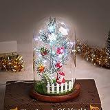 Timker Albero di Natale Piccolo Idee Regalo Natale Luci di Natale con Ornamenti Natalizi LED in Cupola di Vetro per Natale Decorazioni Casa Natale Decorazioni Tavola Regali di Natale Originali