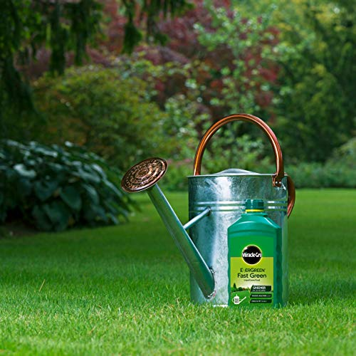 Miracle-Gro Fast Green Liquid Concentrate, Lawn Food - 100 sq m Coverage, Fast-Acting, Results in 24 hours, (Child and Pet Friendly), Extreme Green