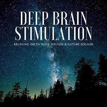 Deep Brain Stimulation: Relaxing Delta Wave Sounds & Nature Sounds