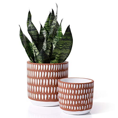 POTEY 055603 Cement Planter Pots - 6 + 4.5 Inch Indoor Concrete Vintage Style Dot Patterned Planters Bonsai Container with Drainage Hole for Plants Succulent Cactus(Plants NOT Included)
