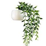 Buhui Suculentas plantas en maceta, 3D imanes de nevera, linda decoración portátil para el hogar o la cocina