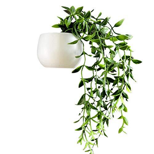 Beyye Calcomanía de imanes para nevera, lindas plantas suculentas en macetas, decoración del hogar y la cocina