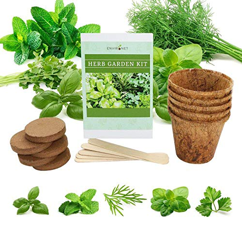 Environet Herb Garden Kit. Seed Starter Kit Indoor. Grow 5 Different Herbs -...