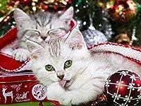 クロスステッチキット-簡単なパターンクロスステッチ刺繡キット-家の装飾のために数えられる刻印された供給-クリスマス動物猫40x50cmes
