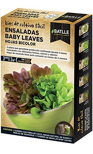 Semillas Batlle – Petites pousses de Salade Baby Leaves, Feuilles Bicolores