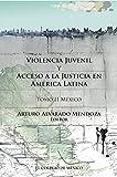 Violencia juvenil y acceso a la justicia. Tomo II. México