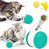 Juguetes Interactivos para Gatos, Juguete para Gatos de Tumbler,Juguetes para Gatos con Hierba Gatera y Plumas, Juguete de Bola de Gato, Juego de Interior para Gatos,Ejercicio Animal Doméstico (azul)