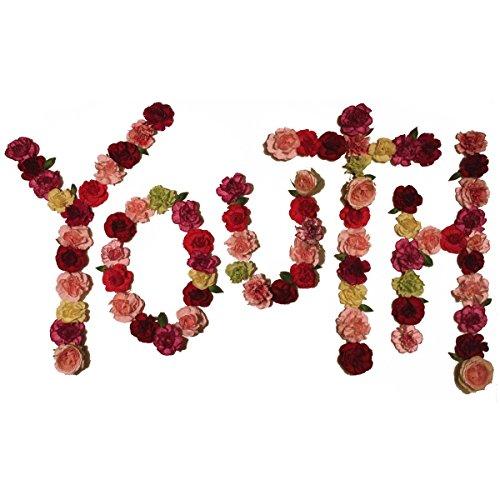 Youth [Vinyl LP]