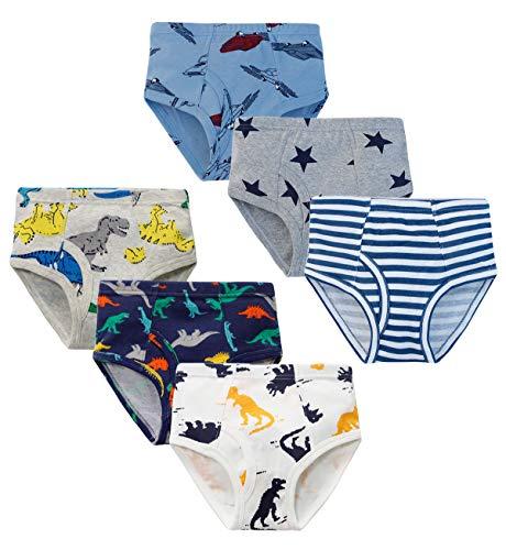 YoungSoul Jungen Slips Baumwolle Unterhosen Kinder Unterwäsche Dinosaurier, 6er Pack 04, 92 (2-3 Jahre) / Größe 100cm
