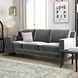 DHP Brynn Loveseat Seater Upholstered, Living Room Furniture, Velvet Sofa, 3, Gray