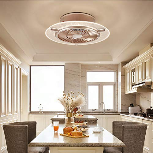 Bustling world Ceiling Fan with Light,Reversible 22 inches LED Remote Control 3-Color Lighting 6 Wind speeds Enclosed Blade Smart Timing Fan, Low Profile Flush Mount Ceiling Light, Bedroom,Gold,Round