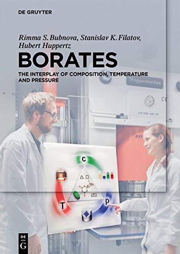 Borates: The Interplay of Composition, Temperature and Pressure (English Edition)