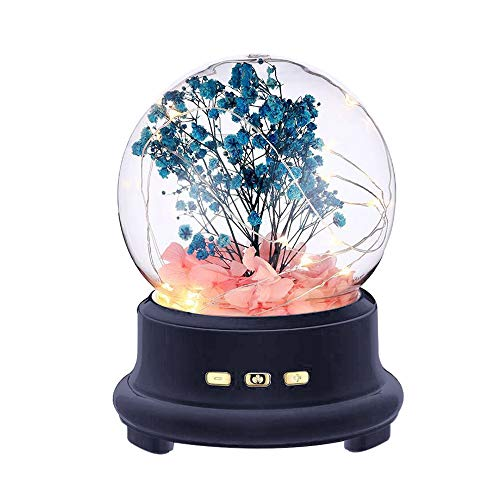Suading 2 en 1 Dream Music Light Popular Card Speaker Flor eterna brillante Música con luz nocturna en vidrio (negro)
