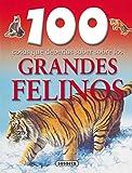 Grandes Felinos (100 Cosas Que Deberias Saber Sobre Los) (100 Cosas Que...