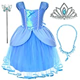 Party Chili Princess Fairy Costume Toddler Girls Birthday Dress Up with Tiara (2T 3T)