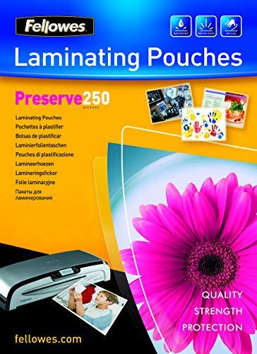 Fellowes 5401802 - Pack de 100 fundas para plastificar, A4, acabado brillo, 250 micras