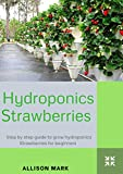 HYDROPONIC STRAWBERRIES: Step by step guide to Grow Hydroponic Strawberries for beginners
