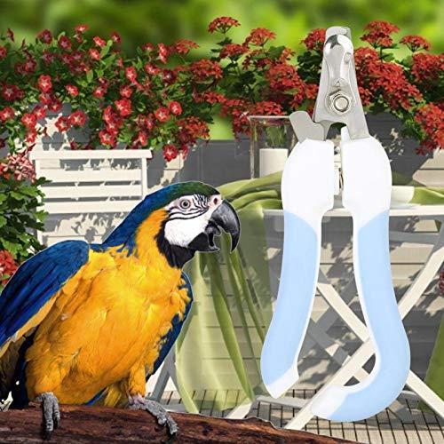 SALUTUYA 59g, cortaúñas para pájaros, Acero Inoxidable, Mango Antideslizante, 14 x 1,5 x 0,2 cm, diseño ergonómico, 14 x 5,5 x 1 cm, para Perros para pájaros
