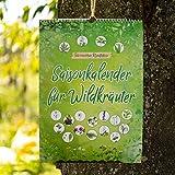 Saisonkalender für Wildkräuter - ewiger Erntekalender für Wildpflanzen - die moderne Kräuterhexe