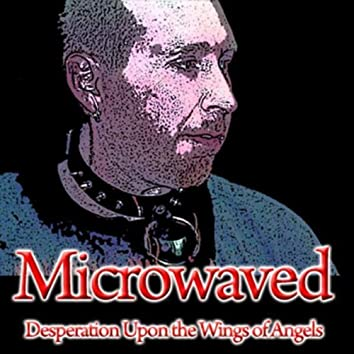 Desperation Upon the Wings of Angels (Album Version)