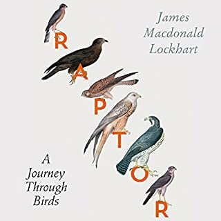 Raptor: A Journey Through Birds cover art