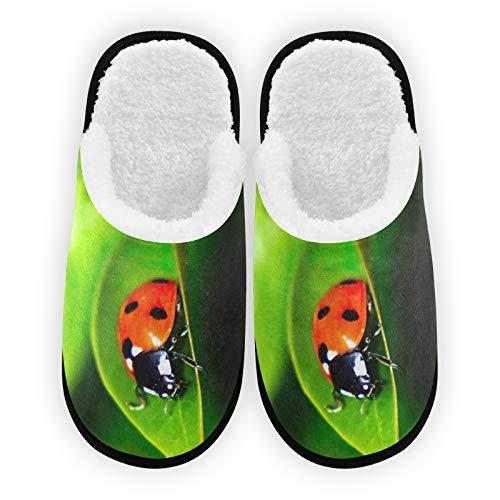 Pantofole da uomo donna con coccinella su foglia verde e fodera in peluche confortevole corallo caldo pile signore casa pantofole per interni ed esterni Spa