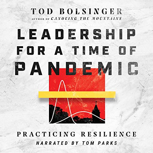 Leadership for a Time of Pandemic: Practicing Resilience audiobook cover art
