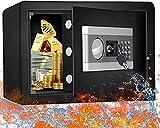 ETE ETMATE Safe Security Box Documents Coffre-Fort,Mot de Passe Electronique Ignifuge et Etanche, Coffre-Fort pour Bureau à Domicile Mural en Acier, Coffre-Fort pour Bijoux en Argent