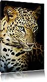 Dark Leopard avec des yeux bleus, peinture sur toile, énorme XXL Photos complètement encadrée avec civière, art impression sur murale avec cadre, moins cher que la peinture ou la peinture à l'huile, aucune affiche ou un poster taille: 120x80 cm