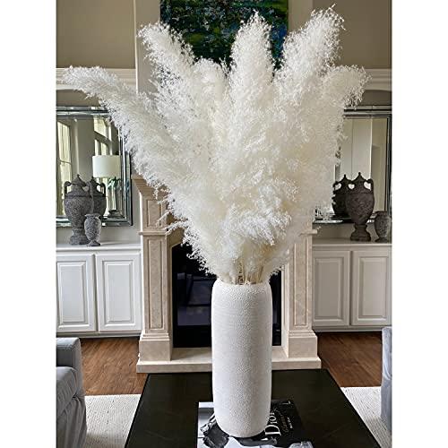Pampas secas extra blancas, grandes, 3 tallos de 104 cm de grosor, esponjosas y altas, para decoración del hogar, para florero, flores, bodas, sala de estar, dormitorio, se puede extender 150 cm