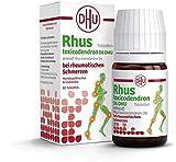 DHU Rhus toxicodendron D6 bei rheumatischen Schmerzen, 80 St. Tabletten