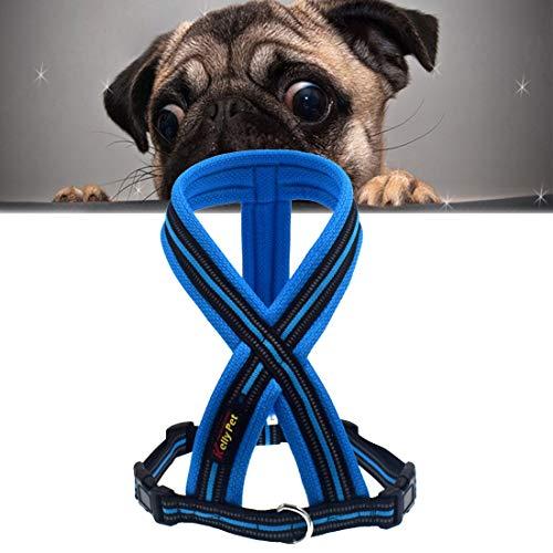 Haustier Asdgfre Pet Hunde Nylon Reflektierende Breathable Bequeme X6 Chest Harness-Blei-Leine, Breite: 2,5 cm, Einstellbereich: 60-80cm (Schwarz) (Color : Blue)