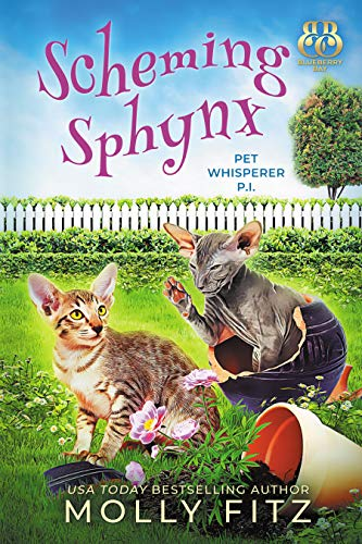 Scheming Sphynx (Pet Whisper P.I. Book 13) by [Molly Fitz, Blueberry Bay]