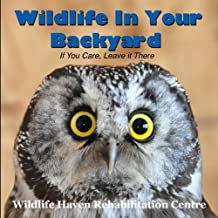 Wildlife in Your Backyard: If You Care - Leave It There!