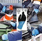 Temp-Ice 700410 700 Gloves, Double Thermal Lined 3/4 Coated Nitrile Grip and Proof Coating, Cold Protection Up to -10 Degree C, Size 10, Black/Blue (1Pair Pack)