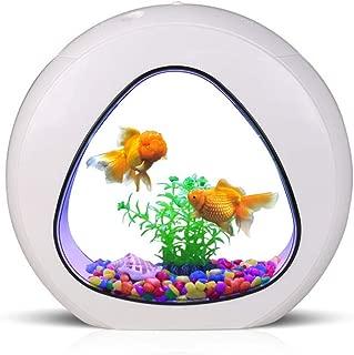 GankPike 1 Gallon Fish Aquarium Betta Fish Tank Betta Fish Bowl with Filter, Air Pump
