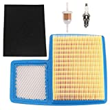HONEYRAIN G16 Air Filter Tune up Kit for Yamaha G16A G19 G20 G21 G22 G22A G29 Drive Gas Golf Cart 1996-UP 4 Cycle 301cc 357cc Engine Replace JN6-E4450-00 JN6-E4450-01 with Fuel Filter Spark Plug